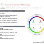 6_Групповой командный отчет_DISC и Мотиваторы RUS-page-004