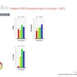 6_Групповой командный отчет_DISC и Мотиваторы RUS-page-007