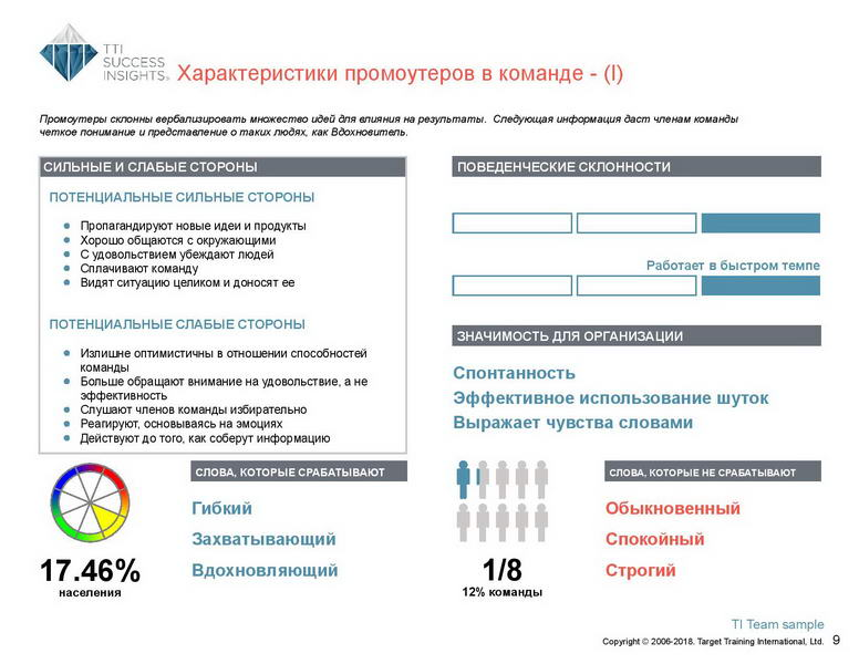 6_Групповой командный отчет_DISC и Мотиваторы RUS-page-010