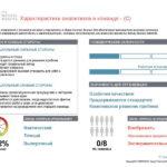 6_Групповой командный отчет_DISC и Мотиваторы RUS-page-017