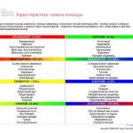 6_Групповой командный отчет_DISC и Мотиваторы RUS-page-021