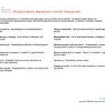 6_Групповой командный отчет_DISC и Мотиваторы RUS-page-027