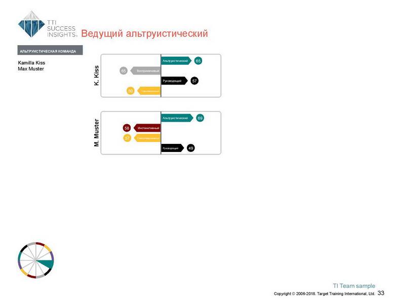6_Групповой командный отчет_DISC и Мотиваторы RUS-page-034