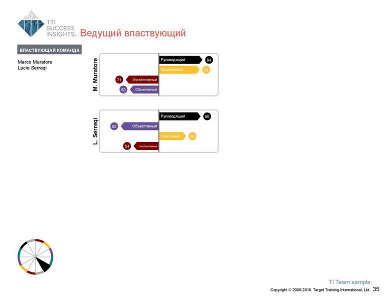 6_Групповой командный отчет_DISC и Мотиваторы RUS-page-036