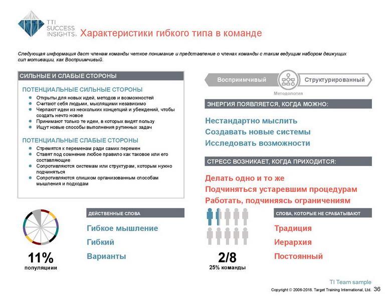 6_Групповой командный отчет_DISC и Мотиваторы RUS-page-037