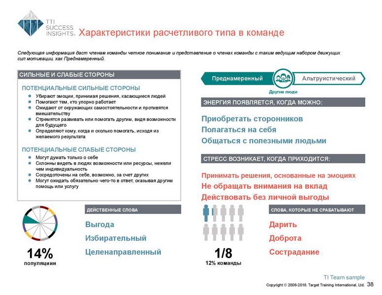 6_Групповой командный отчет_DISC и Мотиваторы RUS-page-039