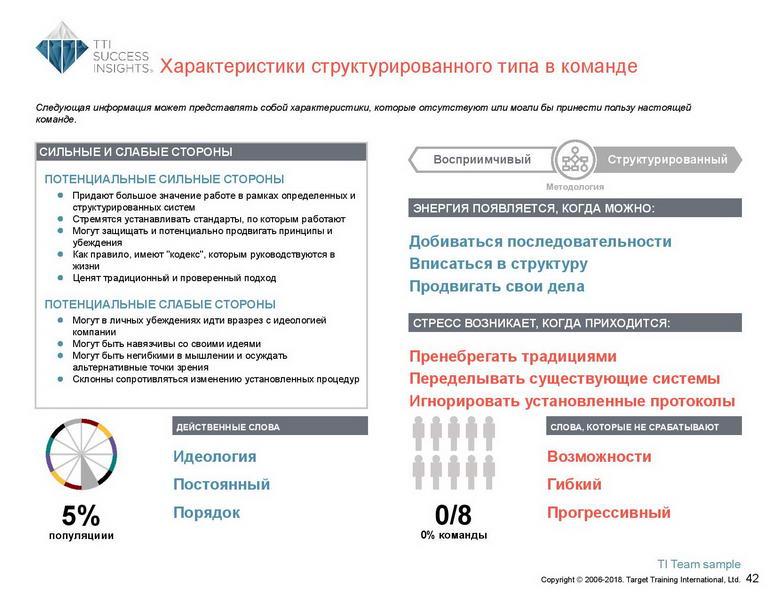 6_Групповой командный отчет_DISC и Мотиваторы RUS-page-043