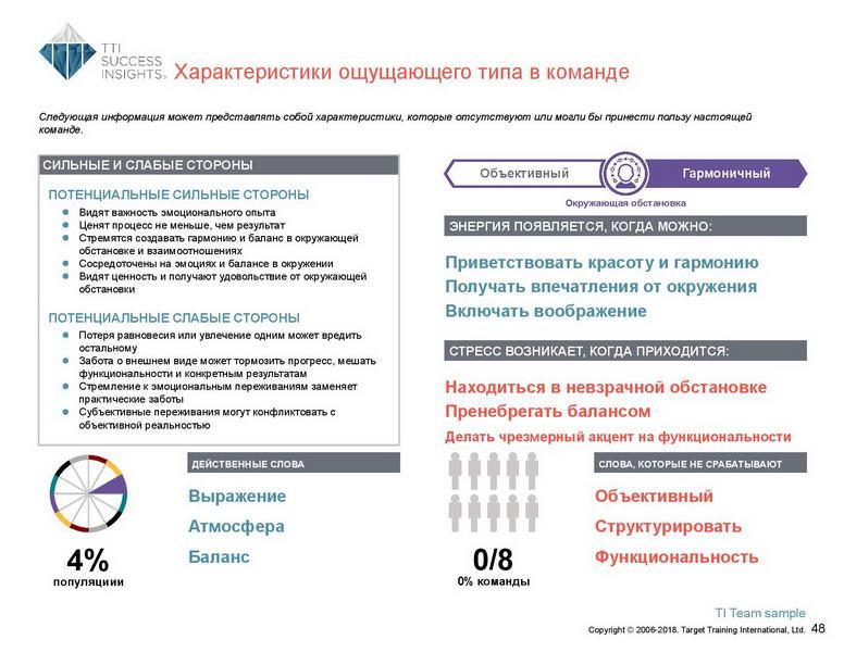 6_Групповой командный отчет_DISC и Мотиваторы RUS-page-049