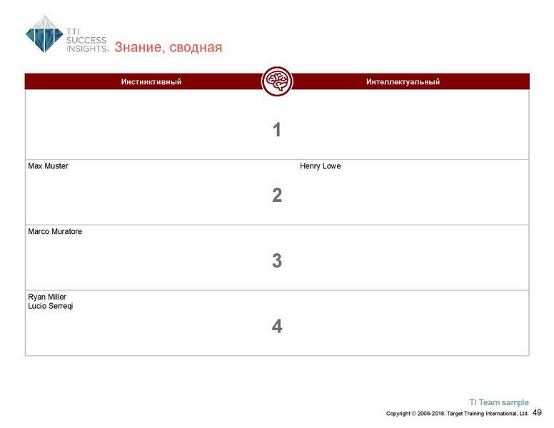 6_Групповой командный отчет_DISC и Мотиваторы RUS-page-050
