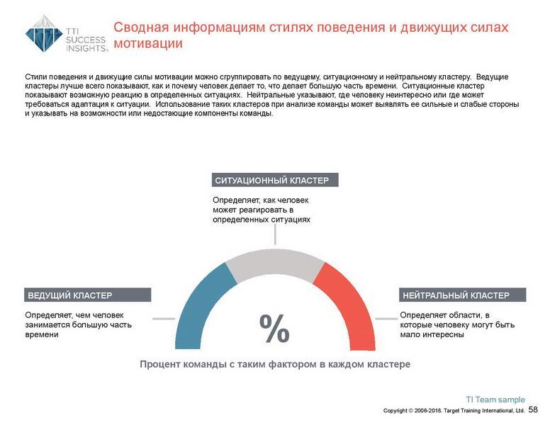 6_Групповой командный отчет_DISC и Мотиваторы RUS-page-059