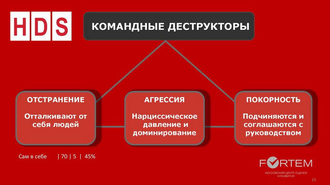 V1_Командный отчет HOGAN_Компания ABC_для Заказчика_2020_Пример-page-015
